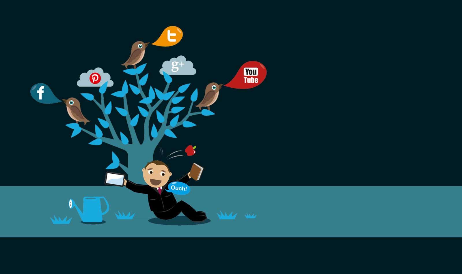 DomainEnroll - Social Media Marketing